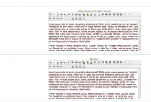 piano_informatizzazione_redazione_esempio